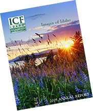 Annual Report - 2005
